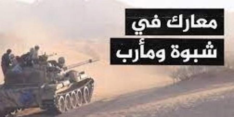 حجم الخسائر البشرية التي تجرعتها ميليشيا الحوثي في معارك شبوة ومأرب الآخيرة