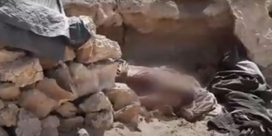بالفيديو : شاهد النهاية المأساوية لمقاتلي ميليشيا الحوثي جنوبي مأرب