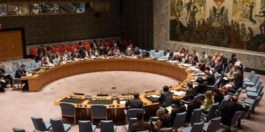 رسالة من الحكومة الشرعية إلى مجلس الأمن الدولي