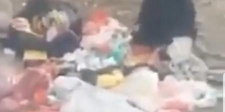 شاهد بالفيديو.. نساء اليمن يأكلن من براميل القمامة في ظل حكم مليشيا الحوثي