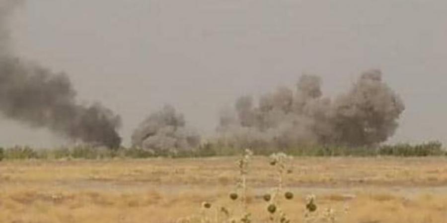 الجيش اليمني يسحق هجوم حوثي في جبهتين غربي مارب