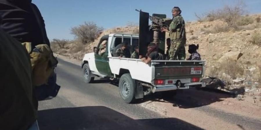 مصدر برلماني يحذر من تسليم مناطق استراتيجية لللحوثيين.. وتحركات لقوات طارق صالح